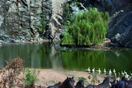 Natuurpark geweldig voor kinderen - Sardinië.